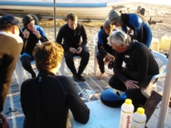Contact Reefteach - Reefteach scuba diving course accommodation - self catering Guest House accommodation Sodwana Bay, underwater dive sites marine life, reef diving, underwater
